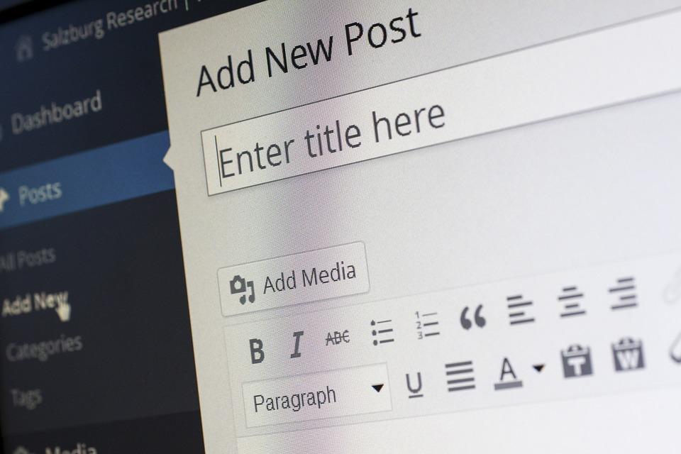 Image of a blank blog post in WordPress